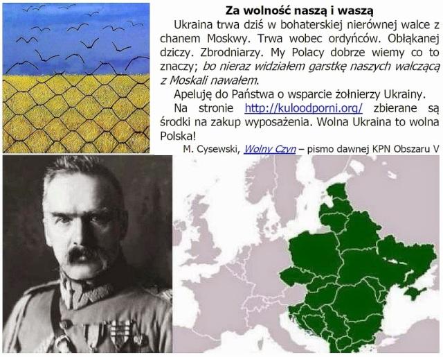 wsparcie dla ukrainy